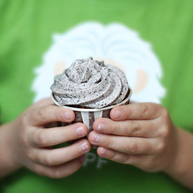 chocolate-cupcake.jpg